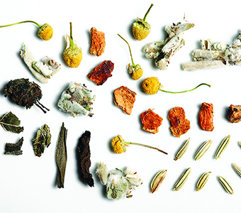 Detox Mountain Herbs